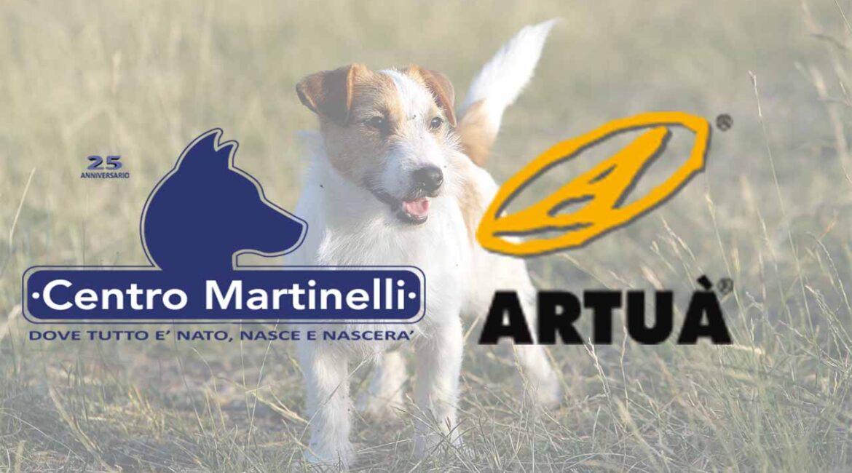 Artuà partner Centro Martinelli